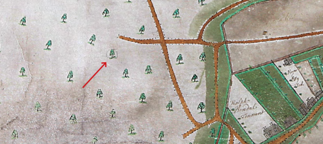 Figure 3. Enclosure detail in 1694 survey